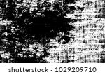 grunge background of black and...   Shutterstock .eps vector #1029209710
