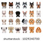 a set of dogs of different... | Shutterstock .eps vector #1029240700