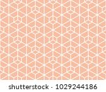 abstract geometric pattern. a... | Shutterstock .eps vector #1029244186