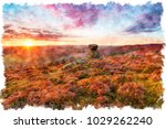 water colour painiting of the...   Shutterstock . vector #1029262240