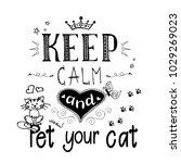 Funny Cats And Phrase Keep Calm ...