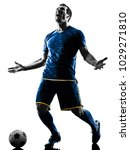 one caucasian soccer player man ... | Shutterstock . vector #1029271810
