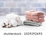 spa or welness concept with... | Shutterstock . vector #1029292693