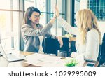 professional business woman... | Shutterstock . vector #1029295009