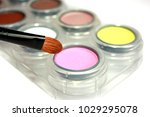 eye shadow palette with eye... | Shutterstock . vector #1029295078