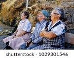 orense  spain   august 21  2016 ... | Shutterstock . vector #1029301546