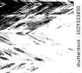 black and white grunge stripe... | Shutterstock .eps vector #1029333850