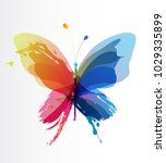 Colorful Butterfly Created From ...