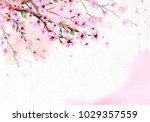 Cherry Blossom On Pink...