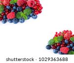 top view. red and blue berries. ... | Shutterstock . vector #1029363688
