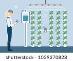 vertical greenhouse gardens....   Shutterstock .eps vector #1029370828