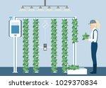 vertical greenhouse gardens....   Shutterstock .eps vector #1029370834
