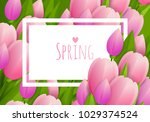 floral background with tulips | Shutterstock .eps vector #1029374524