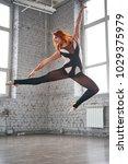 beautiful ballet dancer posing... | Shutterstock . vector #1029375979