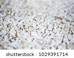 white stone wall texture and... | Shutterstock . vector #1029391714
