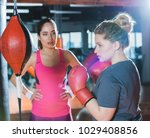 overweight woman having boxing... | Shutterstock . vector #1029408856