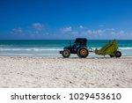 playa del carmen  mexico  ... | Shutterstock . vector #1029453610