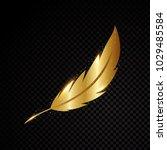 gold feather vector illustration   Shutterstock .eps vector #1029485584