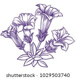 blooming forest flowers  ... | Shutterstock .eps vector #1029503740