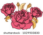 blooming colored pink roses... | Shutterstock .eps vector #1029503830
