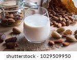 a glass of almond milk on a... | Shutterstock . vector #1029509950