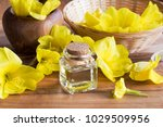 a bottle of evening primrose... | Shutterstock . vector #1029509956
