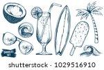 summer travel sketches set.... | Shutterstock .eps vector #1029516910
