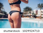 slim luxury girl in a black... | Shutterstock . vector #1029524713