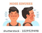 nose sinuses anatomical vector... | Shutterstock .eps vector #1029529498