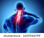 3d illustration  neck painful   ... | Shutterstock . vector #1029546799