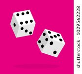 dice flat icon. two game dices. ... | Shutterstock .eps vector #1029562228