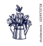 tulip bouquet hand drawn... | Shutterstock .eps vector #1029573718
