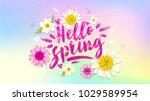 hello spring banner. trendy... | Shutterstock .eps vector #1029589954