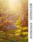 fantastic fantasy landscape of... | Shutterstock . vector #1029621238