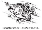 Freshwater fishing scene