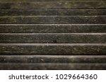 wood title roof pattern... | Shutterstock . vector #1029664360