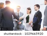 handshake of business partners... | Shutterstock . vector #1029665920