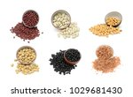 collection of beans isolated on ... | Shutterstock . vector #1029681430