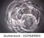 black and white  top view... | Shutterstock . vector #1029689803