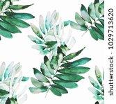 Watercolor Plants Illustration...