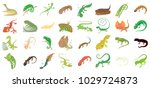 lizard icon set. cartoon set of ... | Shutterstock .eps vector #1029724873