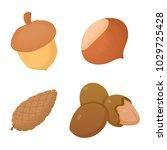 nuts icon set. cartoon set of... | Shutterstock .eps vector #1029725428