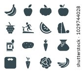diet icons. set of 16 editable... | Shutterstock .eps vector #1029744028