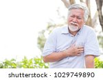 senior asian man suffering from ...   Shutterstock . vector #1029749890