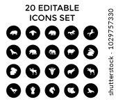 mammal icons. set of 20... | Shutterstock .eps vector #1029757330