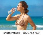 blue sea  white sand paradise.... | Shutterstock . vector #1029765760