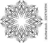 pinstripe design circular vinyl ... | Shutterstock .eps vector #1029769594