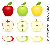 apples red  green and golden... | Shutterstock .eps vector #1029773650