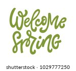 welcome spring  hand lettered... | Shutterstock .eps vector #1029777250