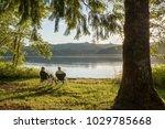 seniors enjoying sunset at... | Shutterstock . vector #1029785668